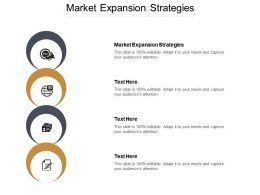 Market Expansion Strategies Ppt Powerpoint Presentation Gallery Gridlines Cpb