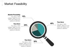 Market Feasibility Ppt Powerpoint Presentation Professional Example Cpb
