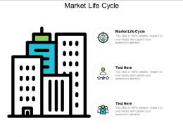 Market Life Cycle Ppt Powerpoint Presentation Ideas Graphics Example Cpb