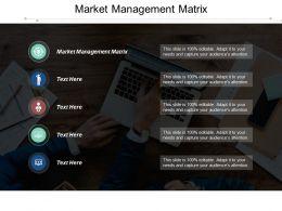 Market Management Matrix Ppt Powerpoint Presentation Gallery Model Cpb