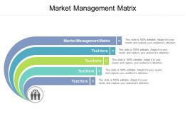 Market Management Matrix Ppt Powerpoint Presentation Portfolio Graphic Tips Cpb