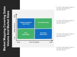 Market Mapping Covering Sales Volume And Market Sizes