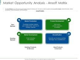 Market Opportunity Analysis Ansoff Matrix Ppt Powerpoint Presentation Model Show