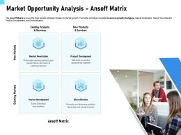 Market Opportunity Analysis Ansoff Matrix Products Ppt Powerpoint Presentation File Layout