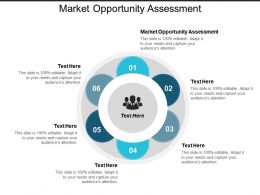 Market Opportunity Assessment Ppt Powerpoint Presentation Infographics Graphic Tips Cpb
