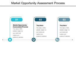 Market Opportunity Assessment Process Ppt Powerpoint Presentation Layouts Layouts Cpb