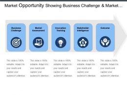 market_opportunity_showing_business_challenge_and_market_assessment_Slide01