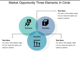 Market Opportunity Three Elements In Circle