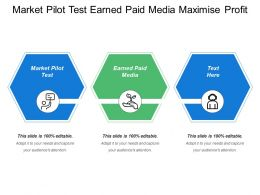 Market Pilot Test Earned Paid Media Maximize Profit