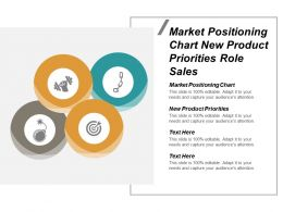 Market Positioning Chart New Product Priorities Role Sales Cpb