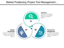 Market Positioning Project Tool Management Business Review Process Cpb