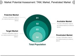 Market Potential Assessment Ppt Images Gallery