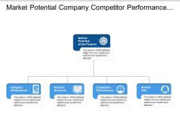 Market Potential Company Competitor Performance Industry Structure
