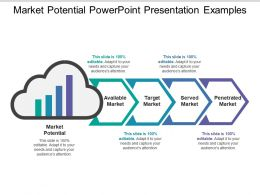 Market Potential Powerpoint Presentation Examples