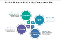 Market Potential Profitability Competition Size Consumer And Product