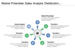 Market Potentials Sales Analysis Distribution Channels New Products Concepts