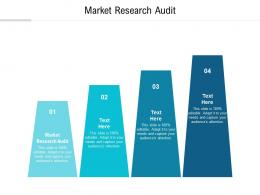 Market Research Audit Ppt Powerpoint Presentation Summary Graphics Design Cpb
