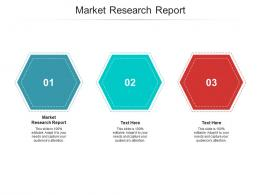 Market Research Report Ppt Powerpoint Presentation Portfolio Show Cpb
