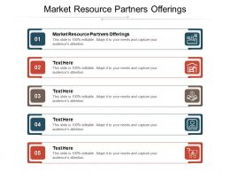 Market Resource Partners Offerings Ppt Powerpoint Presentation Slides Themes Cpb