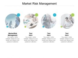 Market Risk Management Ppt Powerpoint Presentation Icon Slides Cpb