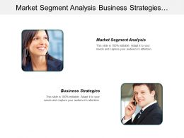 Market Segment Analysis Business Strategies Competitive Strategy Porter Cpb