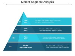 Market Segment Analysis Ppt Powerpoint Presentation Infographic Template Slide Download Cpb
