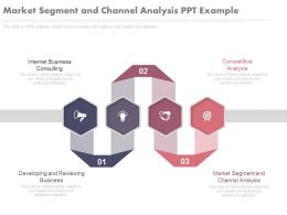 Market Segment And Channel Analysis Ppt Example