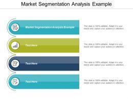Market Segmentation Analysis Example Ppt Powerpoint Presentation Professional Designs Cpb