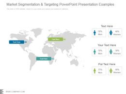 Market Segmentation And Targeting Powerpoint Presentation Examples