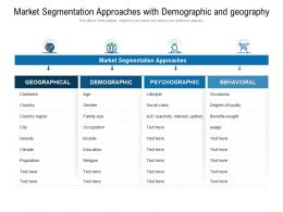Market Segmentation Approaches With Demographic And Geography
