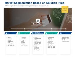 Market Segmentation Based On Solution Type Payments Ppt Presentation Styles Deck