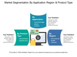 Market Segmentation By Application Region And Product Type