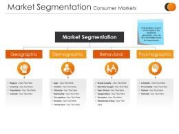 Market Segmentation Consumer Markets Sample Presentation Ppt
