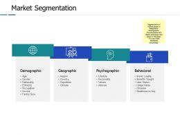 Market Segmentation Demographic Ppt Powerpoint Presentation File Show