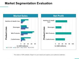 Market Segmentation Evaluation Ppt Professional Graphics Design