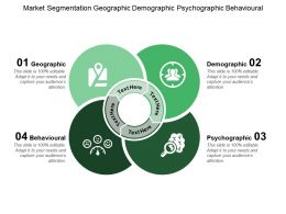 Market Segmentation Geographic Demographic Psychographic Behavioural