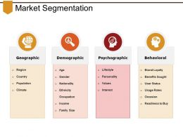 Market Segmentation Good Ppt Example