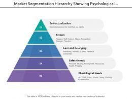 Market Segmentation Hierarchy Showing Psychological Safety Esteem