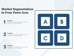 Market Segmentation In Four Parts Icon