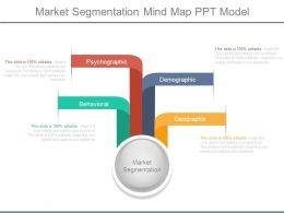Market Segmentation Mind Map Ppt Model