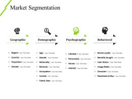Market Segmentation Ppt Examples Template 2