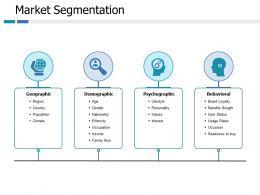 Market Segmentation Ppt Portfolio Professional