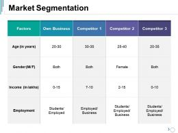Market Segmentation Ppt Visual Aids Infographic Template