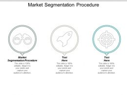 Market Segmentation Procedure Ppt Powerpoint Presentation Gallery Icon Cpb