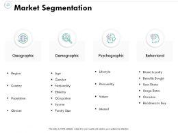 Market Segmentation Psychographic Demographic Ppt Powerpoint Presentation File Slide