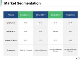 Market Segmentation Sample Of Ppt Presentation
