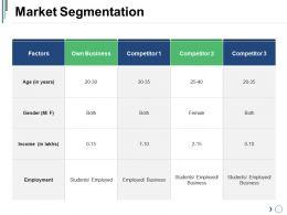 Market Segmentation Sample Of Ppt Presentation