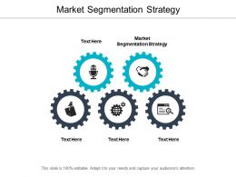 Market Segmentation Strategy Ppt Powerpoint Presentation File Design Inspiration Cpb