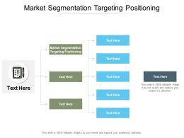 Market Segmentation Targeting Positioning Ppt Powerpoint Presentation Summary Mockup Cpb