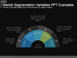 Market Segmentation Variables Ppt Examples